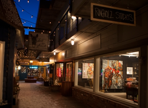 ringholz studios, art gallery, wildlife paintings, jackson hole, wyoming